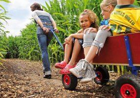Berg toys Bollerwagen aus Holz mit Kindern